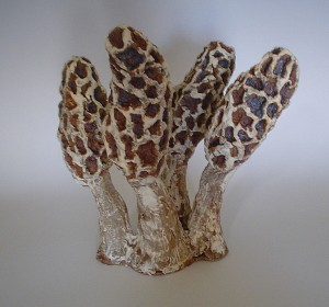 Morel Grouping