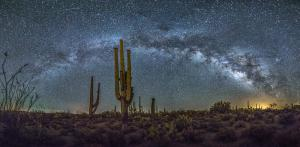 Milky Way Saguaro